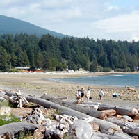 beach at Roberts Creek